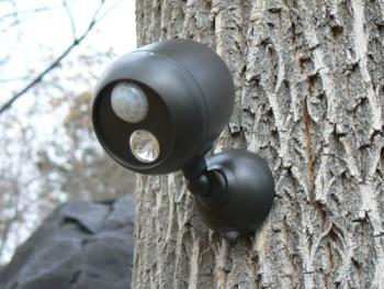 NimoPD (Night Motion Perimeter Detection) Floodlight  on Tree